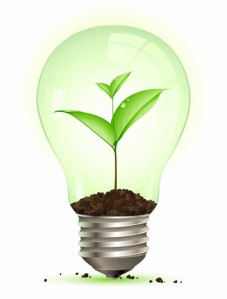 light-bulb-plant-resized-600